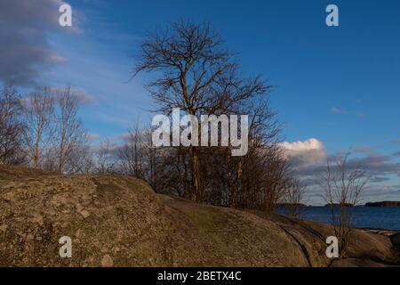 Spring seaside sunshine in Espoo with no people - Stock Photo