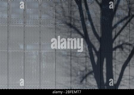 Shadow of tree on perforated metal plate structured facade texture cladding modern architecture - Stock Photo