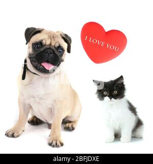 Cat and dog with red heart isolated on white - Stock Photo