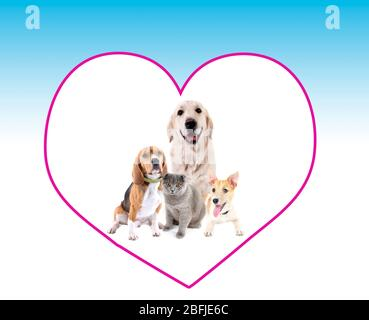 Cute pets in big heart frame on light blue background