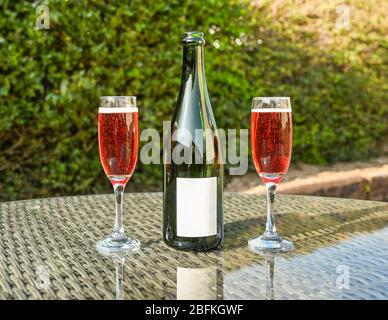 Two flute glasses of pink champagne and an opened champagne bottle with a blank label on a glass table top in a garden. Space for copy. - Stock Photo