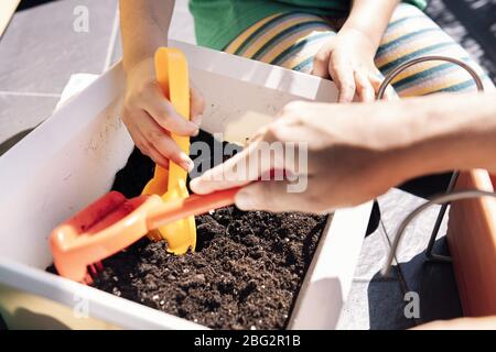hands of a child and her mother in the balcony preparing gardening sand in pots for planting seeds, hobbies at home, sustainable and ecological lifest - Stock Photo