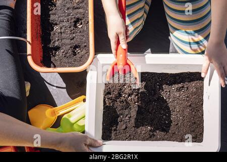 top view of the hands of an unrecognizable kid preparing the gardening sand with her mother to plant in a planter, hobbies at home, sustainable and ec - Stock Photo