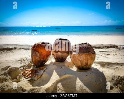 Three coconuts in the sand on a beach in Kenya, Africa. In the background is the Indian Ocean. It's a tropical paradise. - Stock Photo