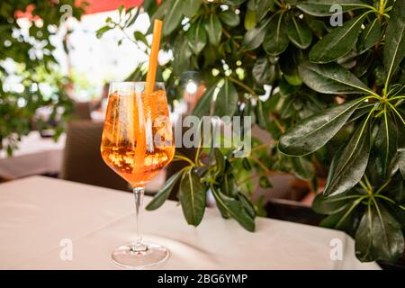 Orange aperol spritz alcoholic summer drink near green plant in cafe, bright background