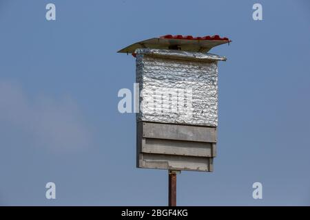 Nesting boxes placed in fields to attract bats [Here Kuhl's pipistrelle (Pipistrellus kuhlii)] as a natural pest control for organic agriculture. Phot