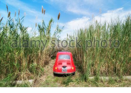 Car parked among long grass, Lipari, Aeolian Islands, Sicily, Italy - Stock Photo