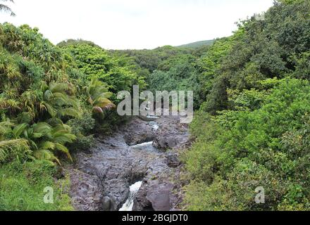 The Seven Sacred Pools, Oheo Gulch, formed by the Palikea Stream flowing through volcanic rock surrounded by rainforest in the Kipahulu District, Maui