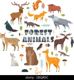 Wild forest animals and birds arranged in circle. Vector cover design. Wild mammal and forest bear, bird, fox illustration - Stock Photo