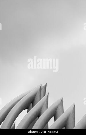 minimalism rising part of row white curve cement architecture construction light and shadow abstract background - Stock Photo