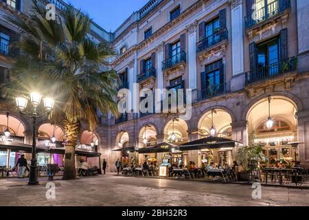 Night view of Placa Reial square , Plaza Real , Gothic Quarter, Barcelona, Catalonia, Spain