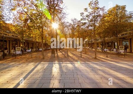 Sunlight streaming through trees during autumn in town - Stock Photo