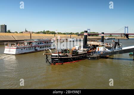 View of an excursion boat and the wheeled tug Oskar Huber, Museum Ship, Museum of German Inland Navigation, Duisburg-Ruhrort, Duisburg, North Rhine-Westphalia, Germany - Stock Photo
