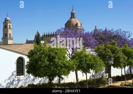 Spain, Andalusia, Jerez de la Frontera, Cathedral - Stock Photo