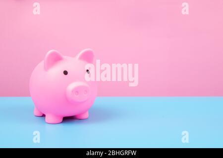 Pink Piggy bank on harmony background.