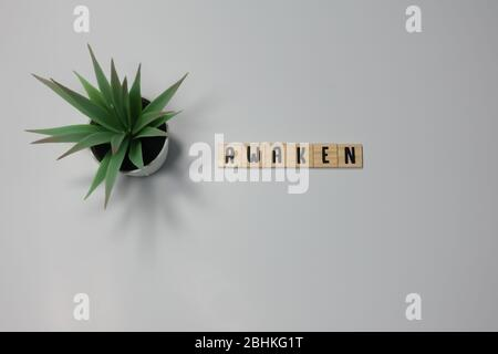 The word Awaken written in wooden letter tiles on a white background.  Concept peace, spirituality or harmony. - Stock Photo
