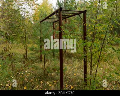 Abandoned residential area taken by nature. Chernobyl Exclusion Zone. Ukraine