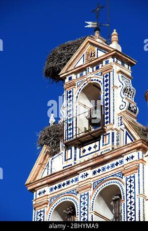 Storks nesting on the bell tower of the San Francisco church (Iglesia San Francisco) in the Plaza de Espana, Ecija, Seville Province, Andalucia, Spain - Stock Photo
