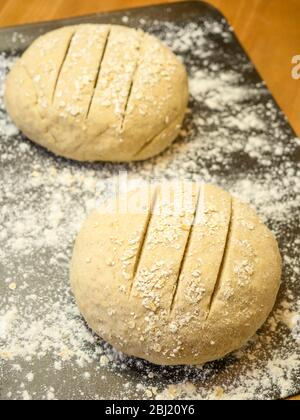 Two slashed rounds of oat bread dough rolled in oats on a floured baking sheet on a kitchen table - Stock Photo