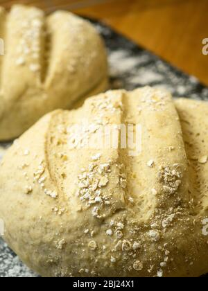 Two proved oat bread loaves ready for baking on a floured baking sheet - Stock Photo
