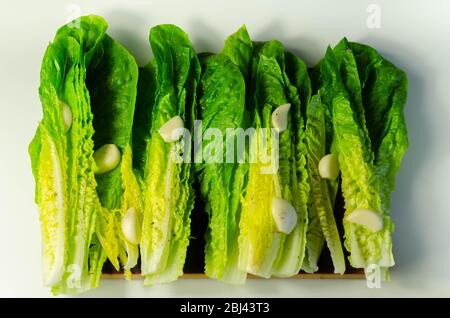 Fresh, cut romaine lettuce with garlic, pepper and salt, meal preparation - Stock Photo