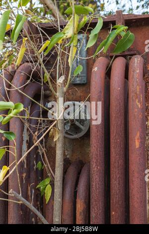 the front of an old 11000 volt rusted transformer with rusted pipes and a hand wheel - Stock Photo