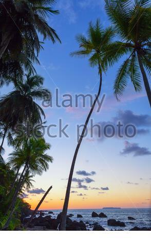 Beach, Drake Bay, Corcovado National Park, Osa Peninsula, Costa Rica - Stock Photo
