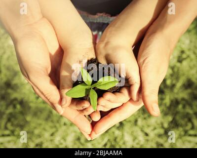 Child and adult holding soil and plant in hands outdoor - Stock Photo
