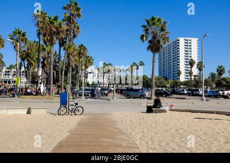 Palm Trees on Venice Beach Boardwalk on a sunny day in Los Angeles, California, USA. - Stock Photo