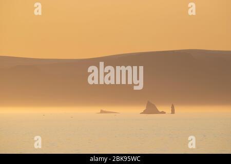 Icebergs in golden evening light, Greenland - Stock Photo