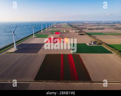 offshore windmill park green energy in the Netherlands Europe, wind mill turbines at sea and land providing green energy industry