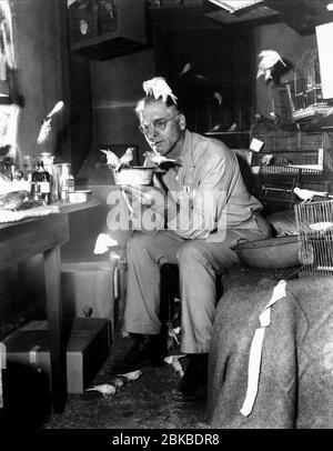 BURT LANCASTER, THE BIRDMAN OF ALCATRAZ, 1962 - Stock Photo