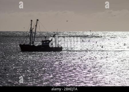 Small fishing boat in Newhaven Harbour - Stock Photo