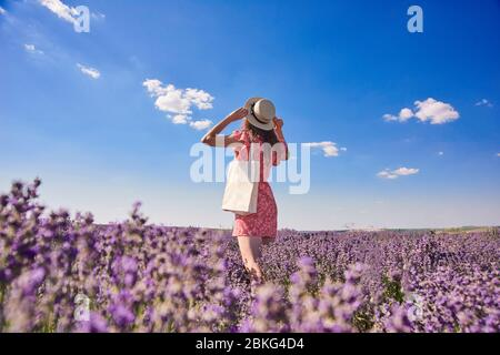 woman  in a straw hat  stay back and look at  blue sky in lavender fields - Stock Photo