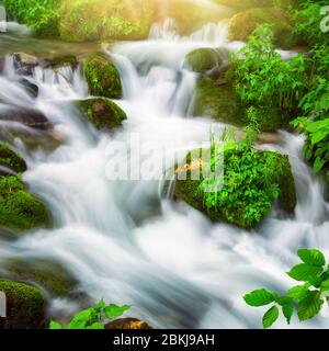 Streams of water beautifully cascading down a wild small river through a mountain forest, square format and long exposure for abstract flow