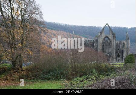 Tintern Abbey in the Wye Valley on the border between England and Wales - Stock Photo