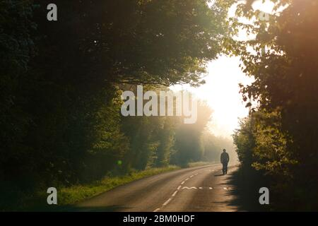 A man walks along a country lane on a misty morning at Fairburn Ings Nature Reserve. - Stock Photo