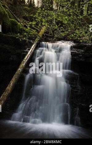 The middle one of three small waterfalls on the Nant Bwrefwr between the cascade and the main fall. - Stock Photo