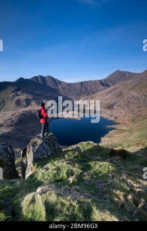 Walker on The Horns above Cwm Dyli, Llyn Llydaw, Mount Snowdon & the Snowdon Horseshoe, Snowdonia National Park, North Wales, UK MODEL RELEASED