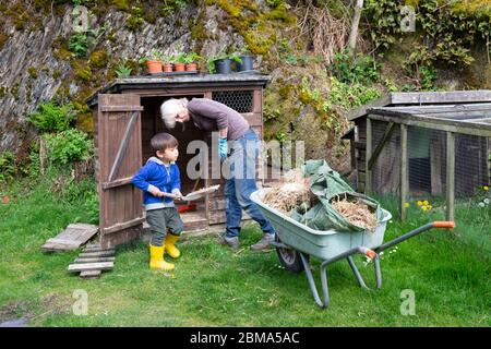 Child little boy helping grandmother grandparent  to take manure out of hen house cleaning chicken shed on  smallholding Wales UK    KATHY DEWITT - Stock Photo