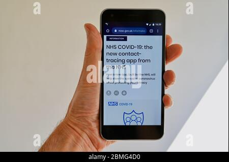 Coronavirus Pandemic. NHS COVID-19 Contact Tracing App viewed on a mobile phone. - Stock Photo