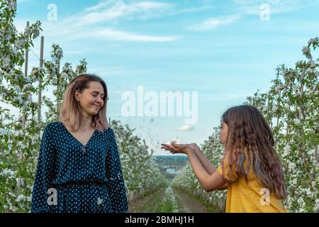 Little curly girl blowing dandelion on her beautiful mom in green dress - Stock Photo