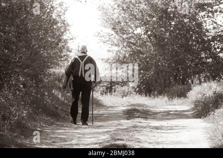 an old man walks along a country lane on a walking stick - Stock Photo
