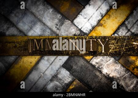 Photo of real authentic typeset letters forming Immunity text on vintage textured grunge copper and black background