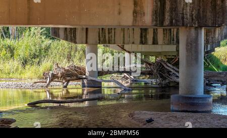 A popular creek for families swimming and paddling while parking under the bridge in the shade - Stock Photo