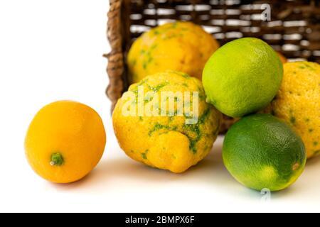 Lemon, lime, Bush lemon close up. Fresh ripe organic fruits in wicker basket, isolated on white background - Stock Photo