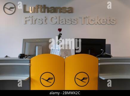 11 May 2020, Hessen, Frankfurt/Main: A red rose stands at the orphaned Lufthansa First Class ticket office at Frankfurt Airport. Lufthansa is in a massive financial imbalance due to the worldwide corona pandemic. Photo: Boris Roessler/dpa