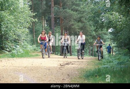 teenage girls cycling in New Forest, Hampshire, England - Stock Photo