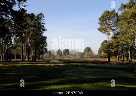 View from the Tee of the 12th Hole to Fairway, Woking Golf Club, Woking, Surrey, England - Stock Photo