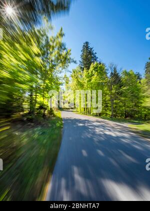 Green forest countryroad road fast run drive intentionally blurry representing speed speedy fast movement runaway away sun frame extreme left corner - Stock Photo